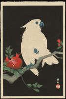 Ohara Shoson - Cockatoo and Pomegranate
