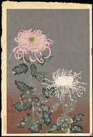 Ohno Bakufu - Chrysanthemum (Red and White)