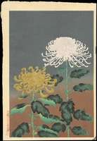 Ohno Bakufu - Chrysanthemum (Yellow and White)