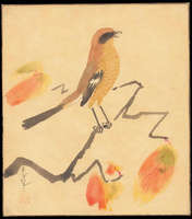 Ohno Bakufu - Shrike on persimmon branch