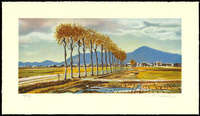 Shigeru Takeda - Rice Field Autumn Breeze (Niigata Prefecture) (Limited edition)