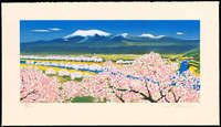 Shigeru Takeda - River Surface of Cherry Blossoms (Yamagata Prefecture) (Limited edition)