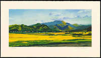Shigeru Takeda - Yellow Blooming (Fukushima Prefecture) (Limited edition)