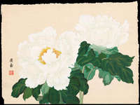 Tanigami Konan - Two White Peonies in Full Bloom